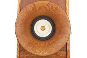 Reproduktorové soustavy Evolution, přední horn Oris500 + Voxativ AC1.8 wooden cone