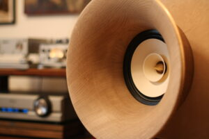 Evolution Speakers: wooden front horn